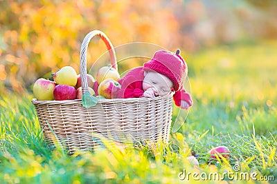 Newborn baby in basket with apples in garden