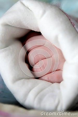 Newborn baby s hands