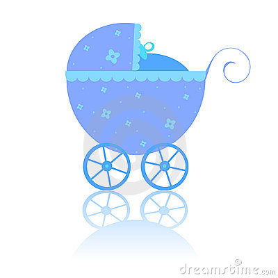 Newborn carriage