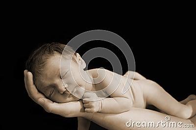 Newborn in hand