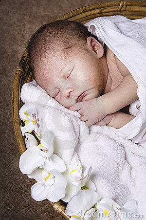 Free Newborn Sleeping Stock Photo - 19961380