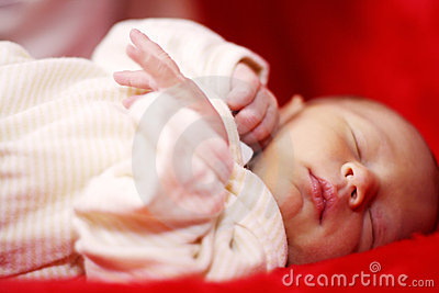 Newborn sweet dreams