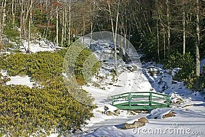 Newland Falls Frozen