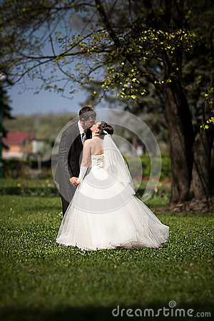 Newly married couple kissing on grass under big tree