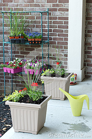 Free Newly Planted Spring Flowers In Flowerpots Royalty Free Stock Photos - 53853088