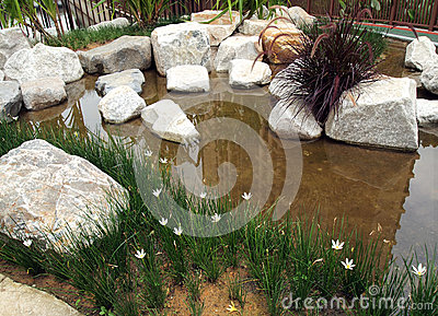 Newly planted water rockery landscaping