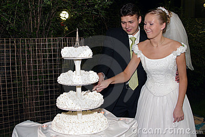 Newlywed couple cutting cake