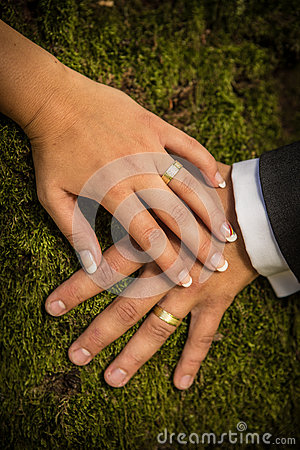 Newlyweds hands with rings