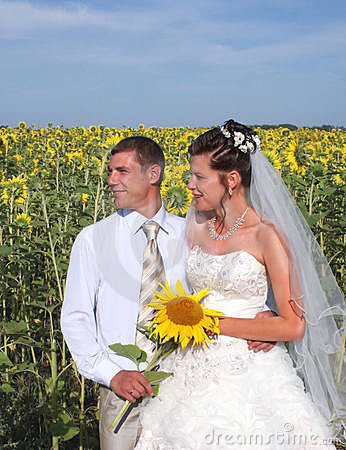 Newlyweds in sunflower field