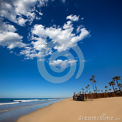 Newport beach in California with palm trees