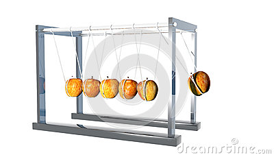 Newtons Cradle - Apples on White