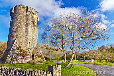 Newtown Castle in Co. Clare