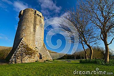 Newtown Castle in Ireland