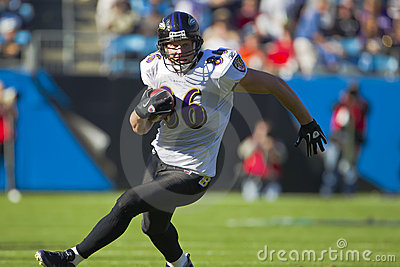 NFL:  Nov 21 Baltimore Ravens Vs Carolina Panthers Editorial Photo