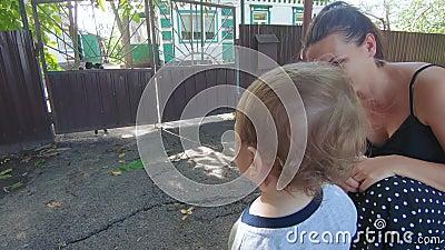 Niño mira al perro metrajes