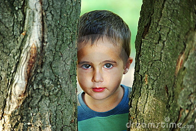 Nice boy hiding beyound trees outdoors