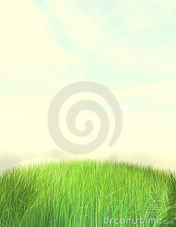 Nice Grass Lawn Background