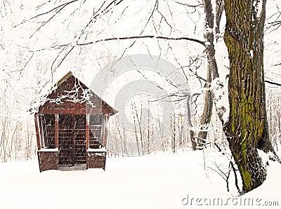 Nice park in winter