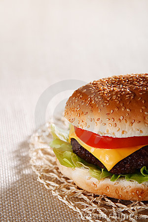 Nice and simple beef cheese burger