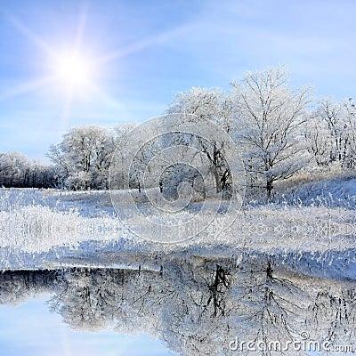 Nice winter lake scene
