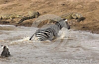 Niebezpieczeństwo brzeg rzeki