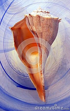 Niebieski spirali