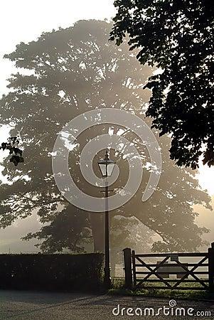Niebla de la madrugada