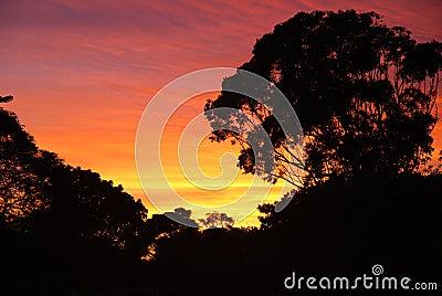 Niebo afryki wschód słońca