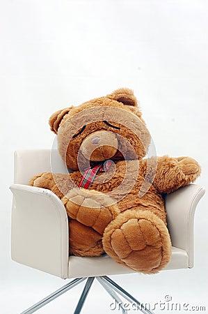 Niedźwiadkowy sen