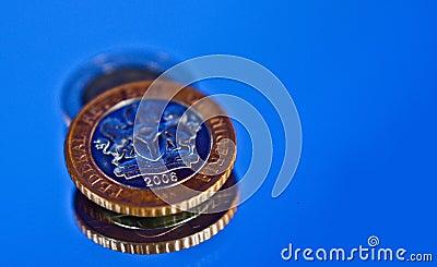 Nigeria Naira coin 2