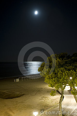 Night on the beach with moon