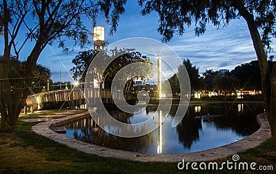 Night City Pond
