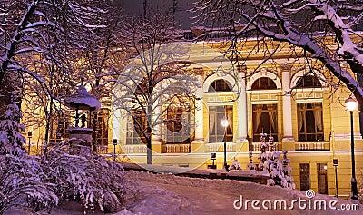 Night city in the winter