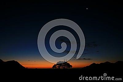 Night in the desert