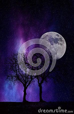 Free Night Dream Stock Images - 89324784