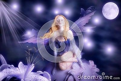 Night elf fairy