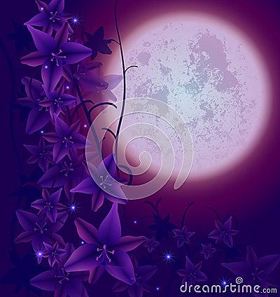 Night flowers02
