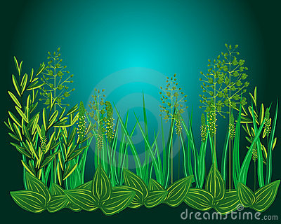 Night grass