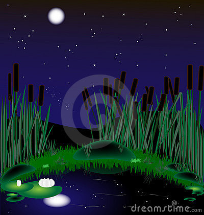Night Lake Royalty Free Stock Photo - Image: 19139055