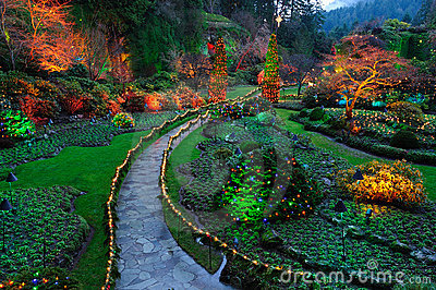 Night lighting of garden