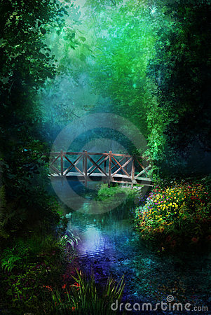 Night in magical forest