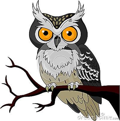 Free Night Owl Stock Photo - 21226350