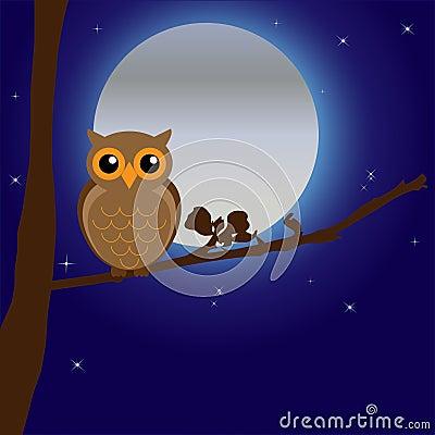 Night Owl by Moonlight