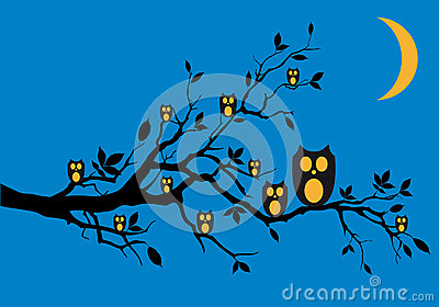 Night owls on tree,