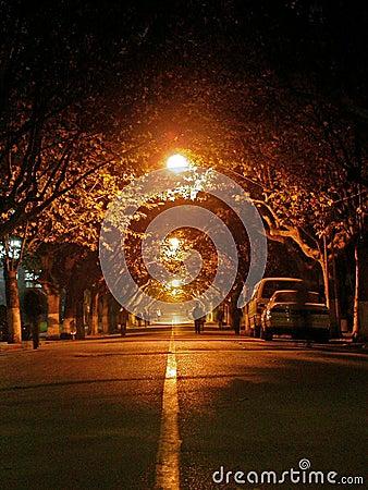 Free Night Road Royalty Free Stock Image - 4530686