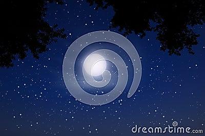 Night sky full moon