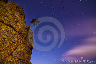 Night Star Trails