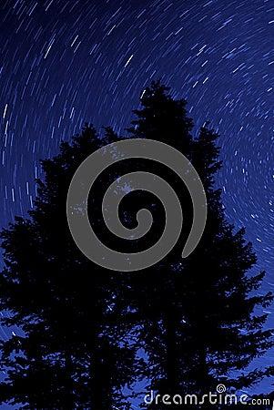 Night Stars Silhouette Trees