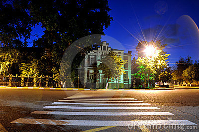 Night street with a pedestrian crossing