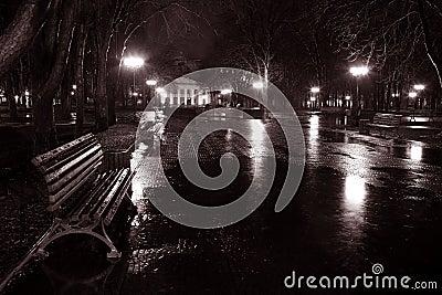 Night street in the rain